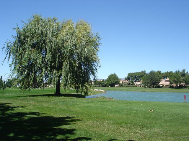 Proche centre village shon de 150m² John Cheetham Immobilier  propose 2800 m² constructible golf pont royal